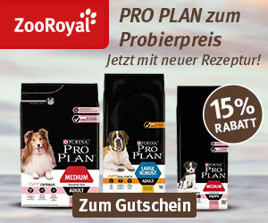 Bei ZooRoyal bekommst du 15% Rabatt auf PRO PLAN für Hunde!