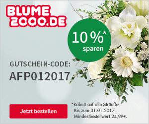 Blumengrüße zum Jahresstart 2017 verschicken und 10% Rabatt erhalten!